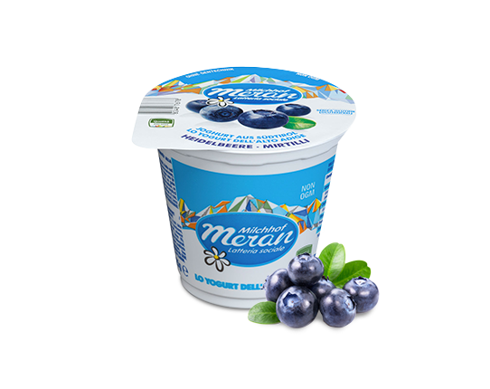 Yogurt classico ai mirtilli
